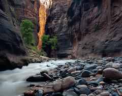 The Narrows (Archer_37) Tags: 2015 narrows nationalpark thenarrows utah zion zionnationalpark vigin virginriver river