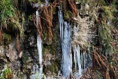 Ice cold (Hugo von Schreck) Tags: hugovonschreck allerheiligen badenwrttemberg deutschland outdoor ice cold winter canoneos5dsr tamron28300mmf3563divcpzda010