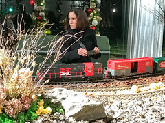 HTS-33 (Peter Parides) Tags: unitedstates newyork christmas trains newyorkbotanicalgardens new york city