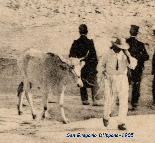 San_Gregorio_d'Ippona-1905