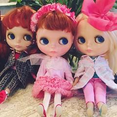 遲到娃聚的第一美景... 三朵花 💝💖💘. Perks of being late was to see these lovely ladies already sitting pretty. #Lucky 😆👍 // #love #blythe #kennerblythe #vintage #doll #ブライス #人形