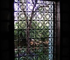 Maroc - Palais de la Bahia (Doonia31) Tags: secret jardin ombre maroc fentre dtail moucharabieh