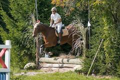 DSC01177_s (AndiP66) Tags: springen derby wohleiberg derbywohleiberg bern samstag saturday 3oktober2015 2015 oktober october pferd horse schweiz switzerland kantonbern cantonofbern concours contest wettbewerb horsejumping springreiten pferdespringen equestrian sports pferdesport sport sony sonyalpha 77markii 77ii 77m2 a77ii alpha ilca77m2 slta77ii sony70400mm f456 sony70400mmf456gssmii sal70400g2 andreaspeters frauenkappelen ch