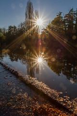 IMG_7695 (photo.bymau) Tags: autumn sun color nature automne canon soleil colorful bretagne autumncolors 7d paysage vache betton feuillage bymau