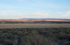 Steens Mountain from Frenchglen Area. (tonopah06) Tags: sunset oregon or steensmountain frenchglen 2015 steensmountains