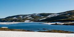glacier (Mauro Grimaldi) Tags: cruise sea lake snow ice norway stavanger norwegen glacier nor montagna navigation crociera norvegia msc fijords flaam maredelnord fiordi navigazione msccrociere mountainslake mscorchestra northssea neveghiaccio crocieranordeuropa stavangersharbor norwegianfijords