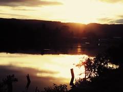 sale el sol (y asi fluye la magia....) Tags: valdivia nuevodia costaneravaldiva
