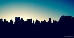 So long, Weekend (cmputrbluu) Tags: nyc newyorkcity sky skyline dusk centralpark iphone sheepmeadow iphoneography iphone4s