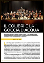 Articolo Colibrì_Musica +_1