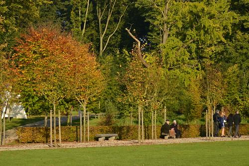 Détente au soleil d'automne