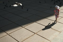 26 (kazancev2015) Tags: street shadow sun girl birds