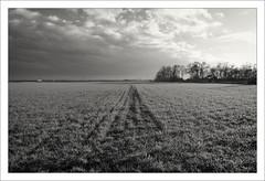 Herbstlicht (12) (Manfred Hofmann) Tags: flickr feld orte brd lichtundschatten projekte themen kurpfalz ffentlich ipernity