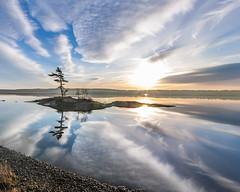 Androscoggin Sunrise (Me in ME) Tags: bw river maine lowtide androscoggin topsham bowdoinham