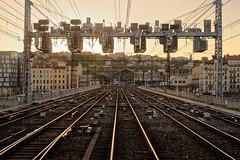 Coucher de soleil sur Perrache (Damien__) Tags: 50mm nikon nikond610 lyon perrache train sncf signalisation sunset soleil rail railway railroad cabview cabride rhne