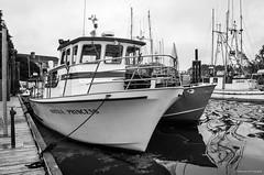 Nootka Princess drift-jigging Party Boat (spetersonphotography) Tags: ucluelet ukee westcoastvancouverisland westcoast britishcolumbia canada nikond5200 nikon island 2016 uclueletinlet ocean pacificocean docks wharfs boats fishingboats fishing fishboats tourists water inlet marina smallcraftharbour uclueletboatbasin sailboats tidepools moorage wharf