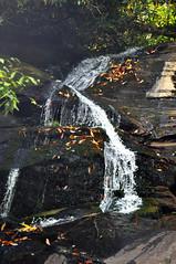 AMMONS CREEK 4 (KayLov) Tags: nature georgia mountains hike water waterfall tall thin ribbon cascade moss fern rock boulder splash ammons creek clayton ga tree forest leaves undergrowth