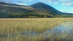 Red Cuillin (Edinburgh Nette ...) Tags: skye october16 postit landscapes lochan reflections reeds ribbet explore
