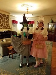 The WItches of OZ dressed as Dorothy Gale for Halloween 2016 in Salem, MA (Halloween in Oz) Tags: seanbrown wickedwitchofthewest halloween2016 salem ma hawthornehotelcostumeball sevendeadlysins glinda oz halloweeninoz salemhauntedhappenings