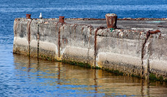 Tie Up Gone _6183 (hkoons) Tags: atlantic bakkaförður iceland wharf abandon abandoned bay beach concrete cracks disused fiord fjord inlet island left northeast ocean old rust saltwater sand sea surf water waves
