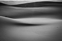 the endless - Wahiba Sands - Oman (Sparks_157) Tags: amit wahibasands amitkar oman sultanate sultanateofoman wahibas dunes blackandwhite arabia sanddunes shapes sensuous nature life outdoor nikon d300 sculpted