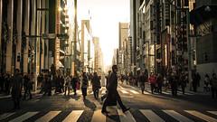 This is Tokyo, Japan (Sunny Ip ) Tags: japan sd quattro sigma travel tokyo sunset genza sunny hk hongkong wide moment capture photo photography photographer life walk road snapshot snap cityscape city ngc