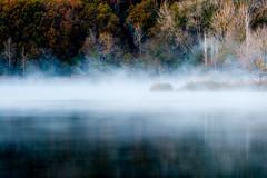 Boires a lEstany (vilchesdavid) Tags: estany lago boira niebla banyoles pladelestany tardor autumn otoo fog lake