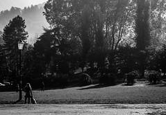 Forest (Daniele Salutari) Tags: photo photography shot wow amazing cool great good dannyboy ilovedannyboy daniele torino italy italia turin people city urban fall black white bianco nero blackandwhite mono bw monochrome streetphotography street fotografia di strada