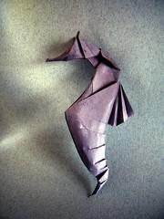 Seahorse - Ta Trung Dong (Rui.Roda) Tags: origami papiroflexia papierfalten cavalo marinho caballito de mar ippocampo hippocampe seepferdchen seahorse ta trung dong
