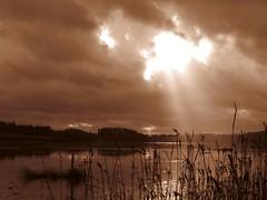 ylisjarvi16 (Kola-apsa) Tags: ylisjrvi muurla salo sepia lake crepuscular rays light landscape