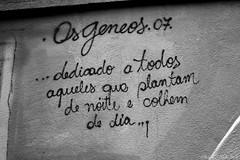 IMG_8251 (gustavditullio) Tags: graffiti osgemeos saopaulo quote pensamento messege poetry