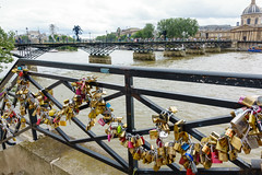 day ten: riverbank (dolanh) Tags: seine france padlocks paris river locks