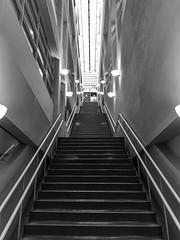 YMCA Staircase (michaelTO) Tags: 52weeksthe2016edition weekstartingfridaynovember182016 week472016 2016 52 52weeks bw blackwhite canada grosvenorstreet ontario project52 staircase stairs toronto vanishingpoint ymca week47theme