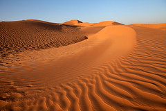 the desert (dive-angel (Karin)) Tags: desert wste goldgelb emptyquater oman eos5dmarkii 2470mm sand dne dune waves wellen natur nature
