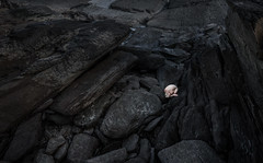 (laura zalenga) Tags: ireland tv show masterofphotography black white pale contrast stone rock dark human tiny girl woman body cold lonely alone earth nature beach coast ©laurazalenga