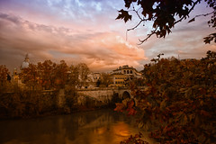 autumn leaves at sunset (giotn (off for a while)) Tags: fall leaves rome sky sunset