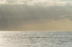 Ocean (jukkarothlauronen) Tags: ocean nature göteborg sweden gothenburg öckerö manualfocusing nikon100mmf28eseries
