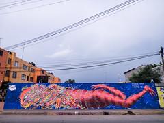 SWIMMER K@T  Kloer + Koate (KOATE MIX) Tags: street urban art animal fauna cat mexico mix feline graphic sweet style spray line delicious talent swimmer meow sponsor tlahuac koa kloer koate koaligrafik huxme
