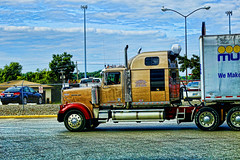 Western Star (raymondclarkeimages) Tags: usa canon photography photographer goods semi business commercial rig trucks bigtruck carrier trucking logistics 6d 70200mm tractortrailer rci cdl westernstar imageof pictureof picof raymondclarkeimages 8one8studios robisontrucking