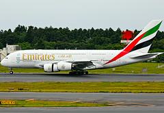 A6-EDY (lkarasawa) Tags: japan emirates a380 ek nrt emiratesairlines 388 naritainternationalairport rjaa airbus380800 a6edy