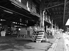 Tsukiji Market (elminium) Tags: japan tokyo market tsukiji monocrome dmcg1