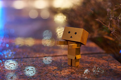 Between Dreams and Reality (yiming1218) Tags: model bokeh sony dream reality  danbo  a7ii  danboard   a7m2 fe55 sel55f18z ilce7m2