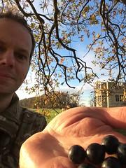 I got sloes! (dark_dave25) Tags: new november cold sunny national trust sloes 2015 lyveden bield