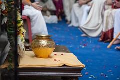 IMG_5509 (iskconmonk) Tags: festival prabhupada swami kartik prabhu brahmananda vrindavan iskcon swamiji sanyasi goshala iskconvrindavan
