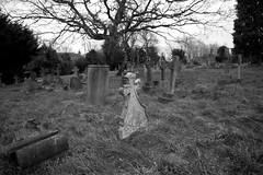 Graves at the top of the cemetery (IanAWood) Tags: pinner londoncemeteries londonboroughofharrow walkingwithmynikon nikkorafs24mmf14g pinnercemetery nikondf