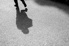 Walking Shadow (James Hodgson Photography) Tags: black white shadow street photography silhouette brighton pavilion gardens path walker
