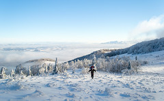 Man on a path (oleksandr.mazur) Tags: activity adventure alone backpack beautiful clear cold day fog footpath forest freedom haze heaven hiking horizon ice landscape light man mist nature one outdoor path peaceful people rest scenic season sky skyline snow snowy sun tourist sunlight sunny tourism trail travel tree trekking vacation view walk weather wilderness winter woodland