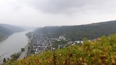 Blick auf Oberwesel (vom Günderodehaus)