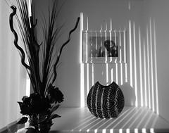 Shadows and light (paul hitchmough photography) Tags: shadows liverpool nikond7200 blackandwhite light paulhitchmoughphotography