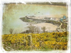 Wales in May series (Nick Kenrick.) Tags: newquay wales harbour carmarthen magicunicornverybest