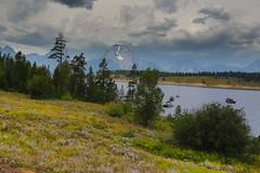 Jackson Lake at Signal Mountain Lodge (gunigantip) Tags: alta wyoming unitedstates gtnp grandtetonnationalpark grandtetons tetons nationalpark signalmountainlodge jacksonlake shore scenic mountains lake